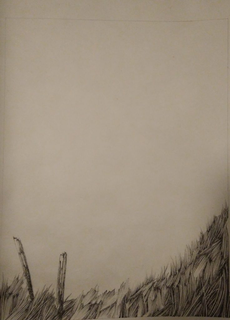 Montagne, chemin, sentier, prairie, herbe, nature