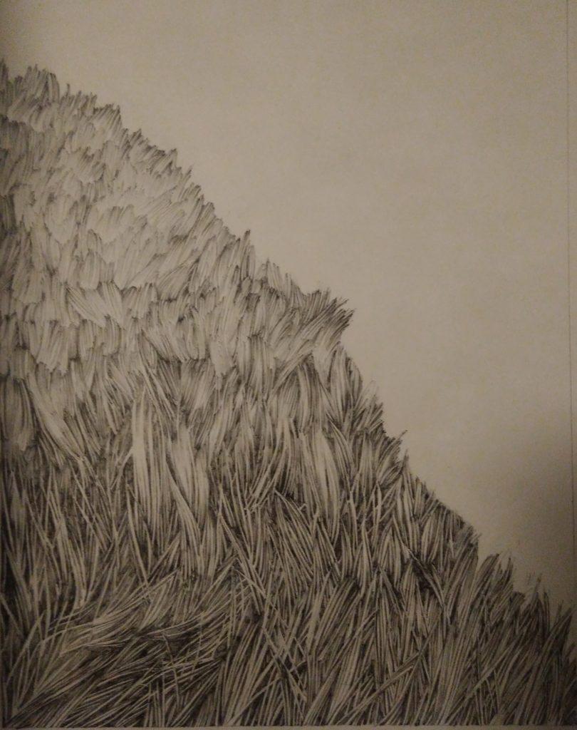 Montagne, pente, prairie, encre de Chine, trait, art, dessin