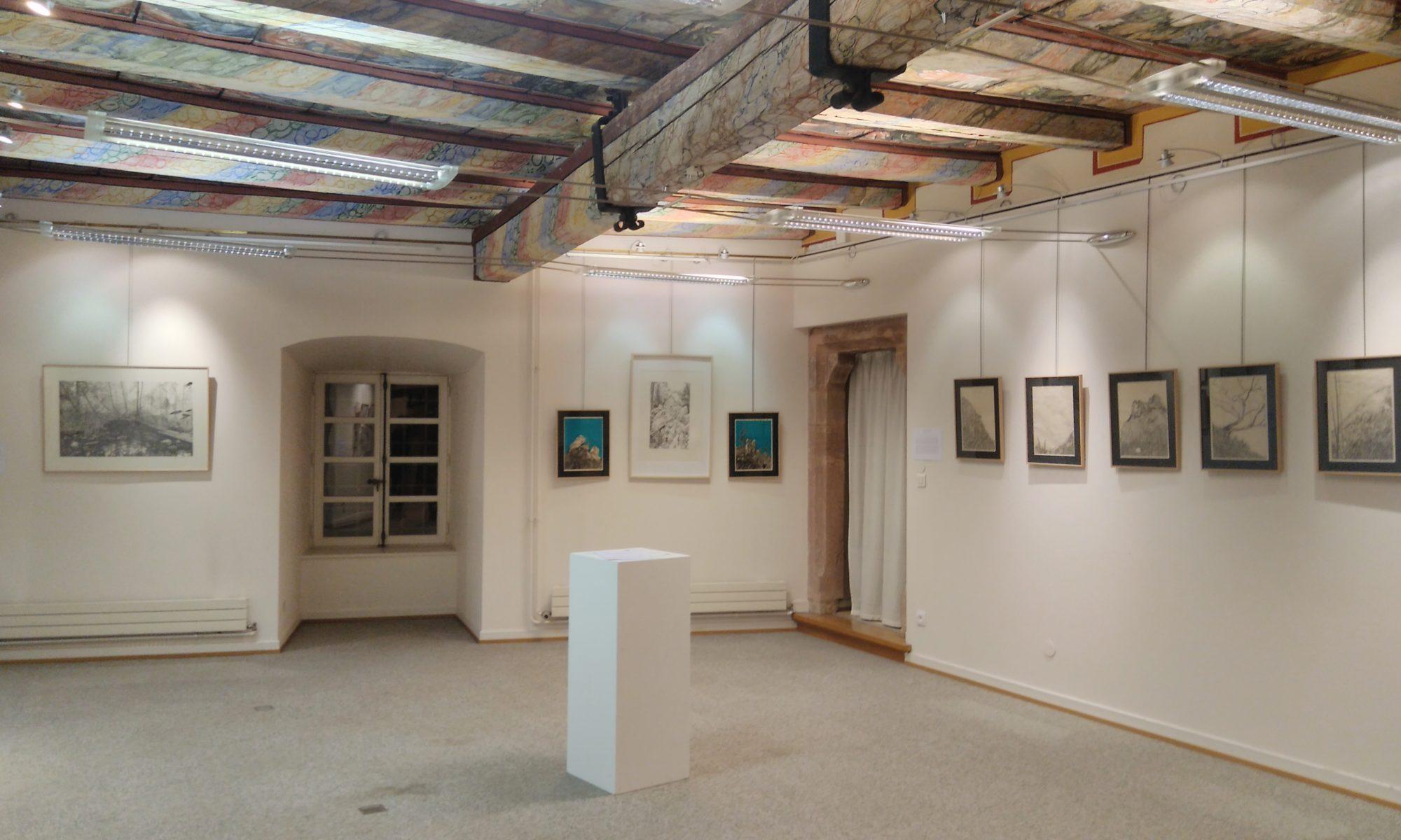 Emmanuel Henninger, Mulhouse, Art, Kunst