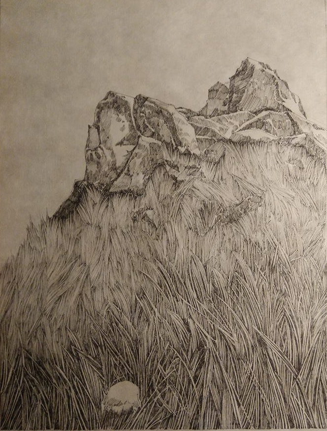 Emmanuel Henninger, Rocks, Field, Nature, herbs