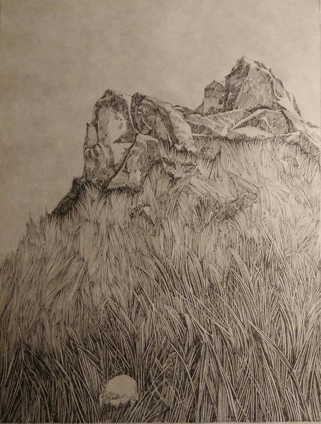 Emmanuel Henninger, Rochers, herbes, prairie, encre de Chine, Papier