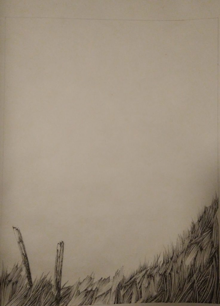 Henninger Emmanuel, Bergen, Tinte, Wiese, Natur, Vogesen
