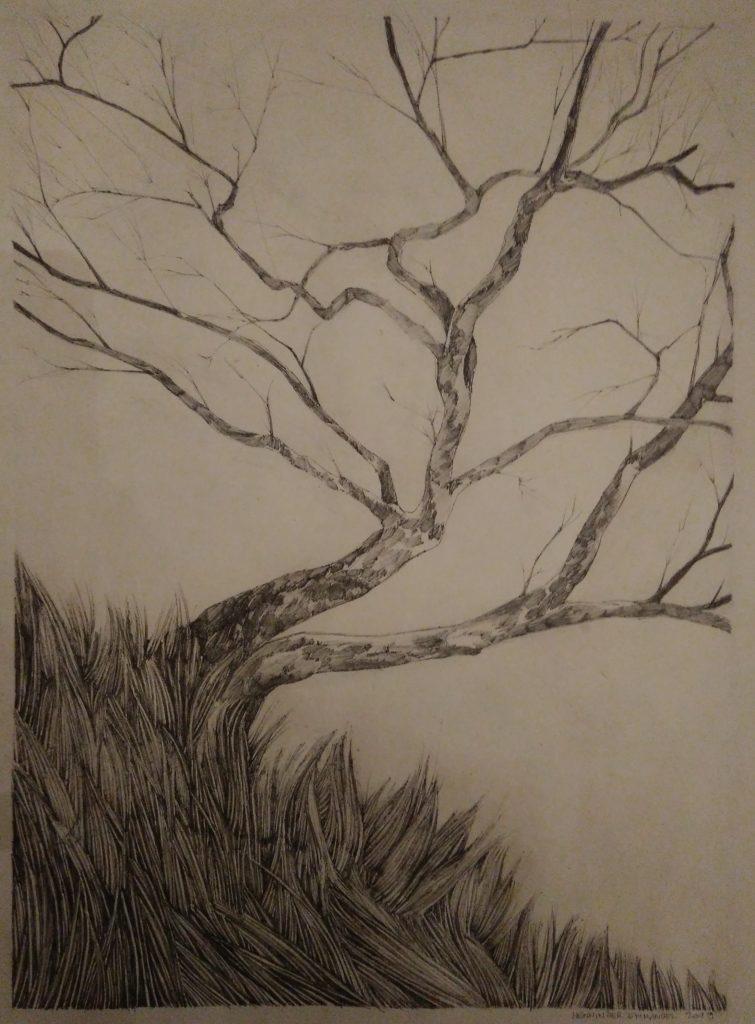 Tree, herbs, field, wind