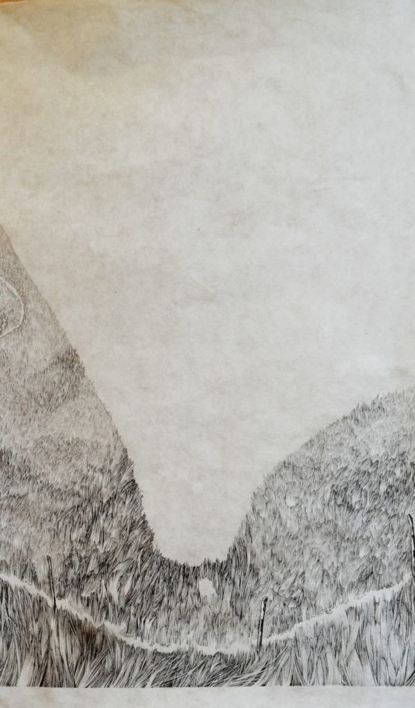 Henninger Emmanuel, mountains, grasses, ink, Japan paper
