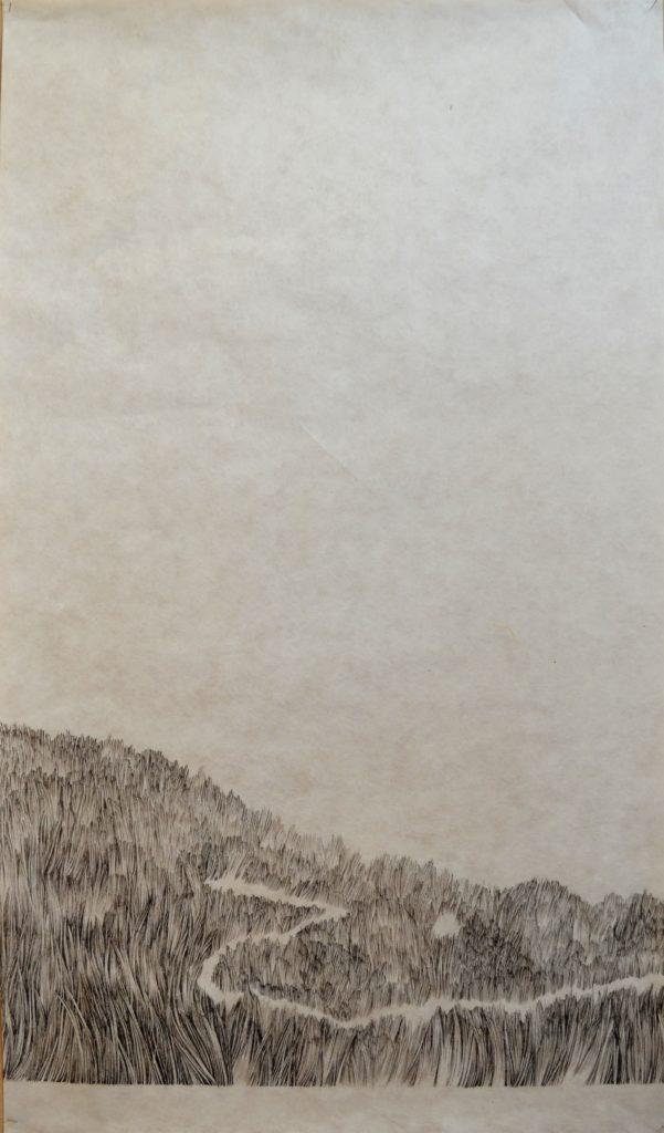 Emmanuel Henninger, sentier, montagne, prairie, biodiversité, art