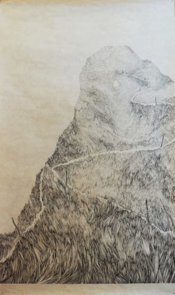 Henninger Emmanuel, Bergen, Wandernweg, Wiese