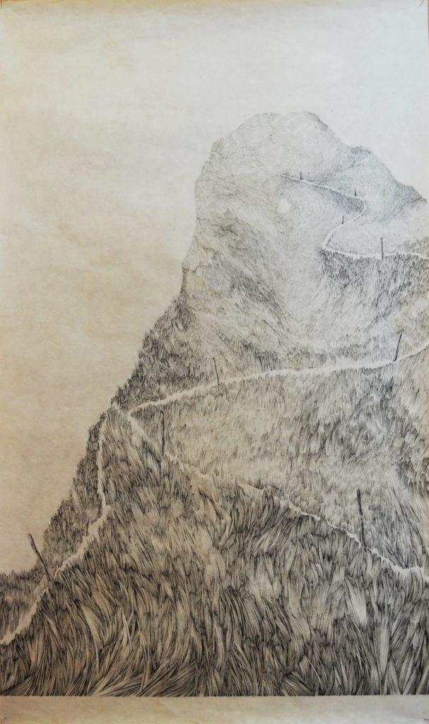 Henninger Emmanuel, mountains, grasses, ink