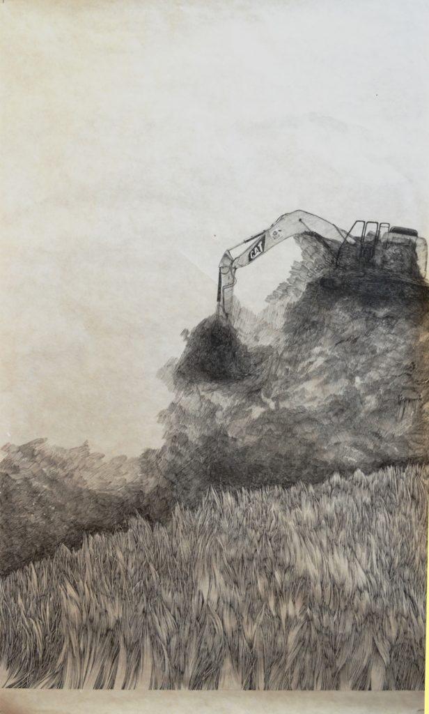Henninger Emmanuel, déforestation, protection, prairies