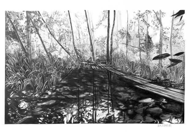 wet area, Emmanuel Henninger, trees, nature
