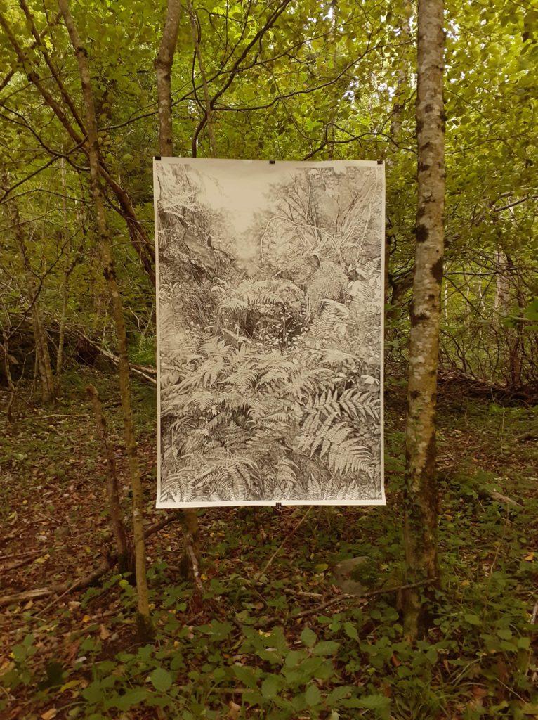 Emmanuel Henninger Forêt Primaire