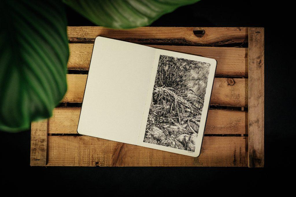 Simonswald, Germany, Emmanuel, Henninger, Dessin, Drawing, Ink, Wald