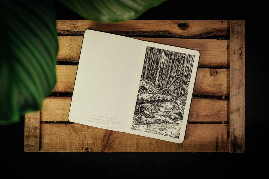 Emmanuel, Henninger, trees, simonswald, Allemagne, Dessin, Encre, Oliver, Kramer, Style, Art