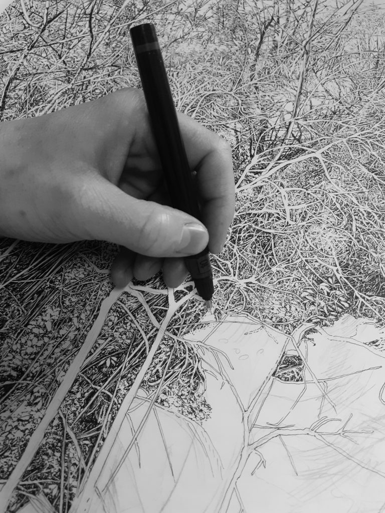 Emmanuel Henninger, In progress, 2020, Forest, Drawings, Nature, Ink on paper, Black and White