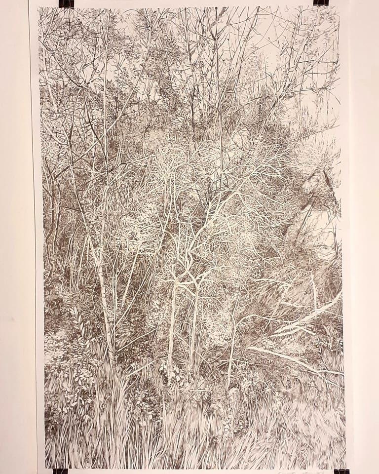 Emmanuel Henninger, Art, Kunst, Urwald, Wald, Natur,