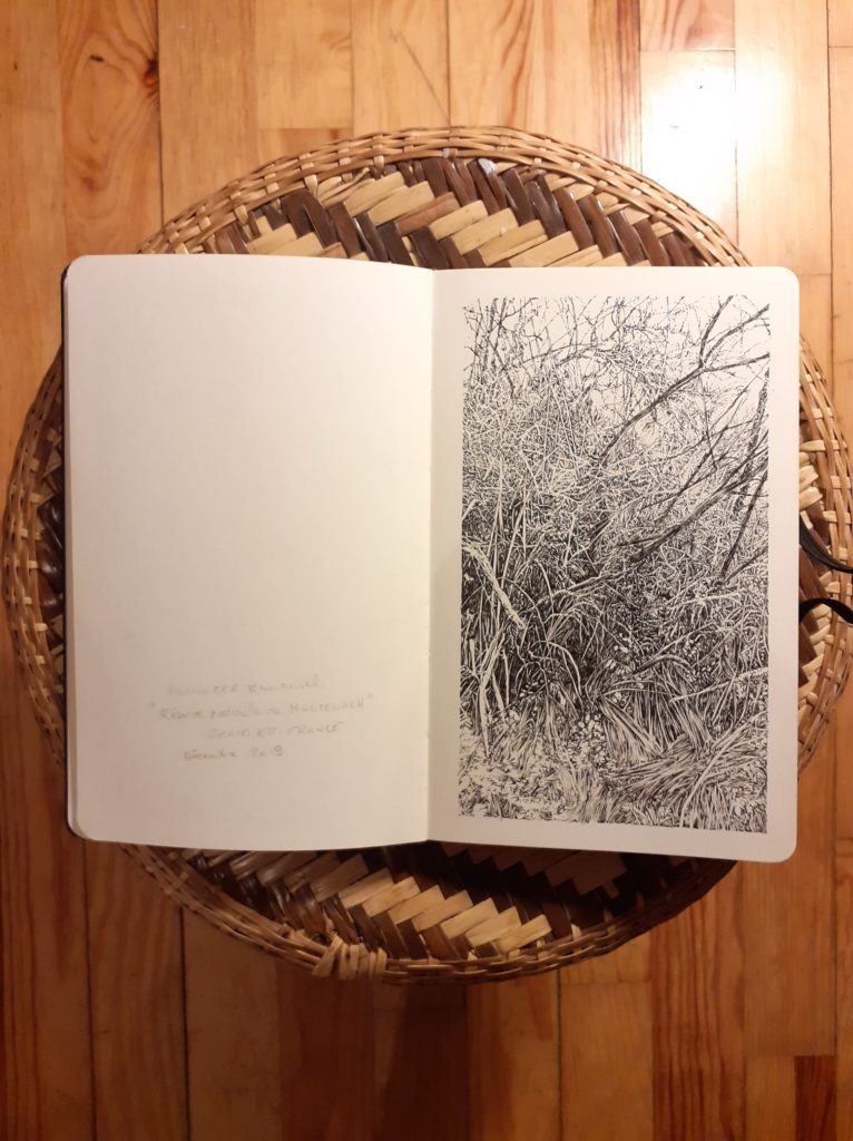 Montenach, Black, White, Paysage, All Over, nature, Emmanuel Henninger, drawing