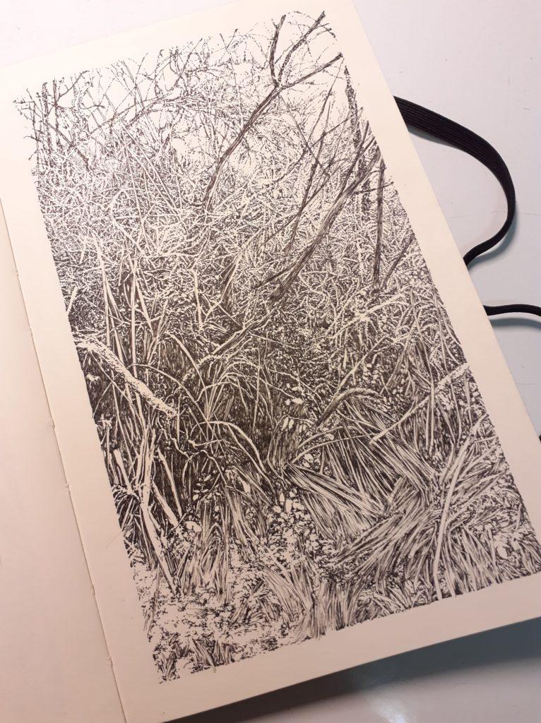 All Over, Nature, Forest, Montenach, Emmanuel Henninger, 2020