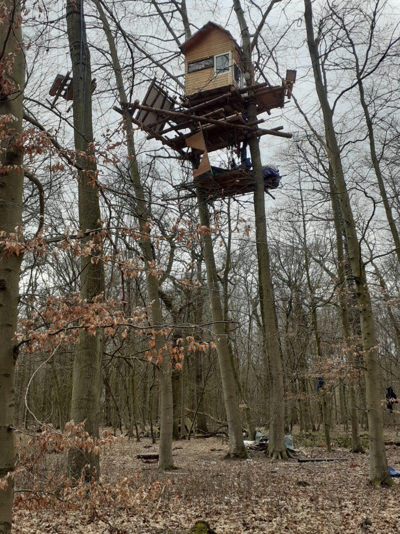 Emmanuel Henninger, Hambacher Wald, Deutschland, Art, Kunst