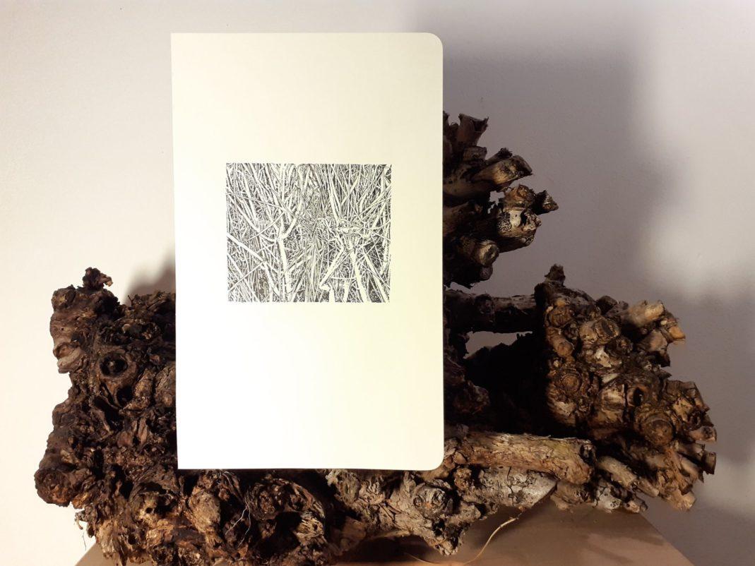 Emmanuel, Henninger, art, dessin, noir et blanc, art, paysage