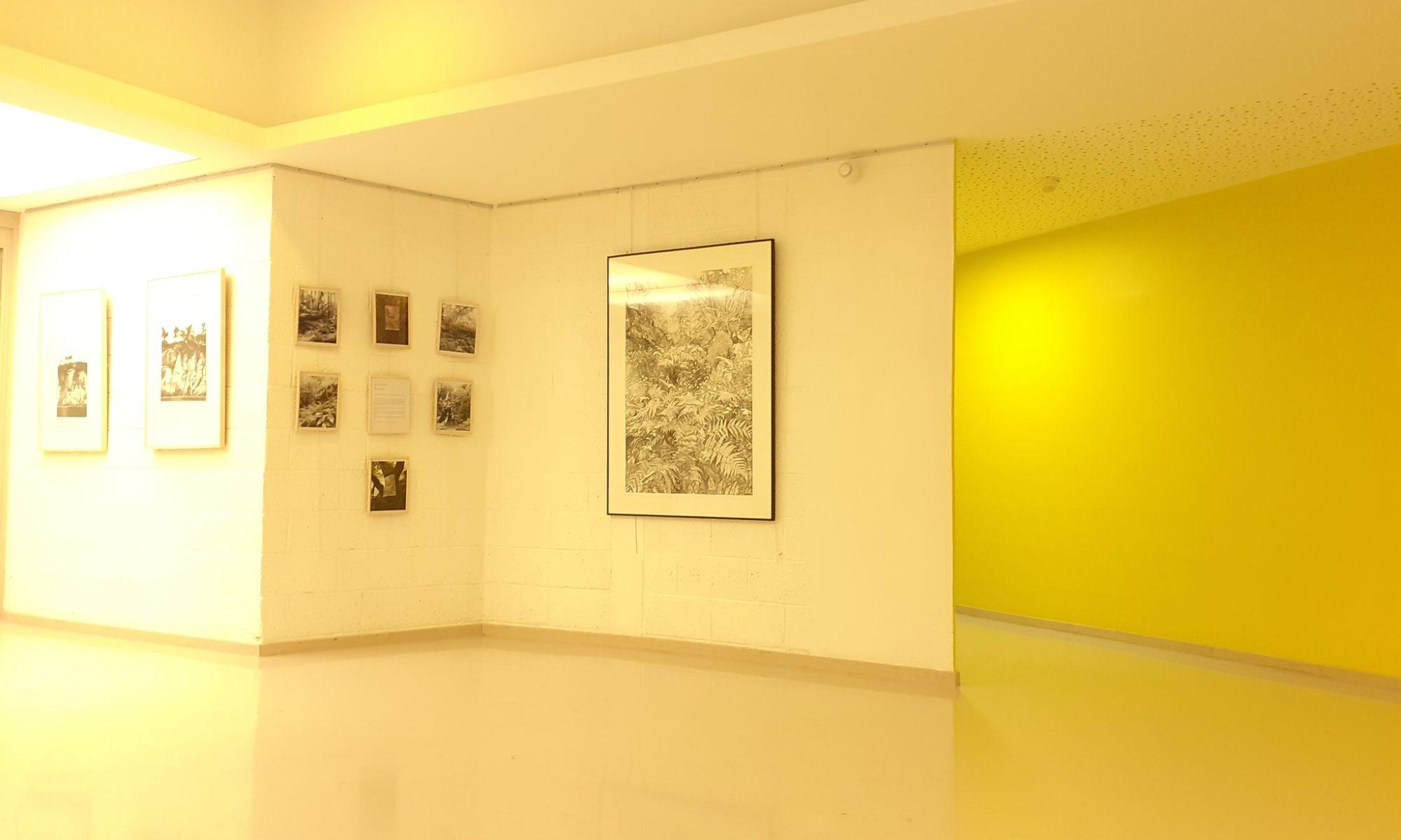 Emmanuel Henninger, aronde, riedisheim, exposition