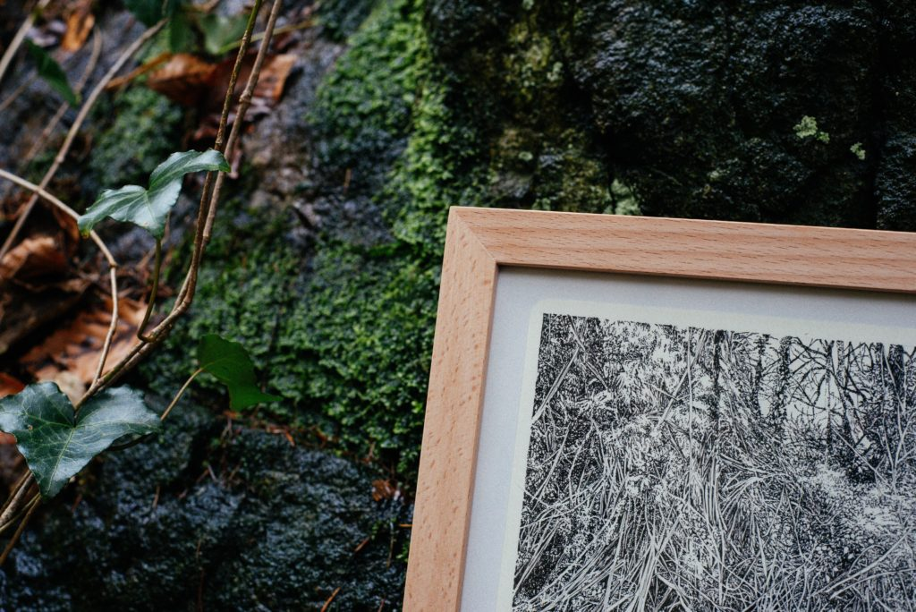 Emmanuel Henninger, art, henninger, drawing, nature, blackforest, freiburg, germany, france, alsace, ink