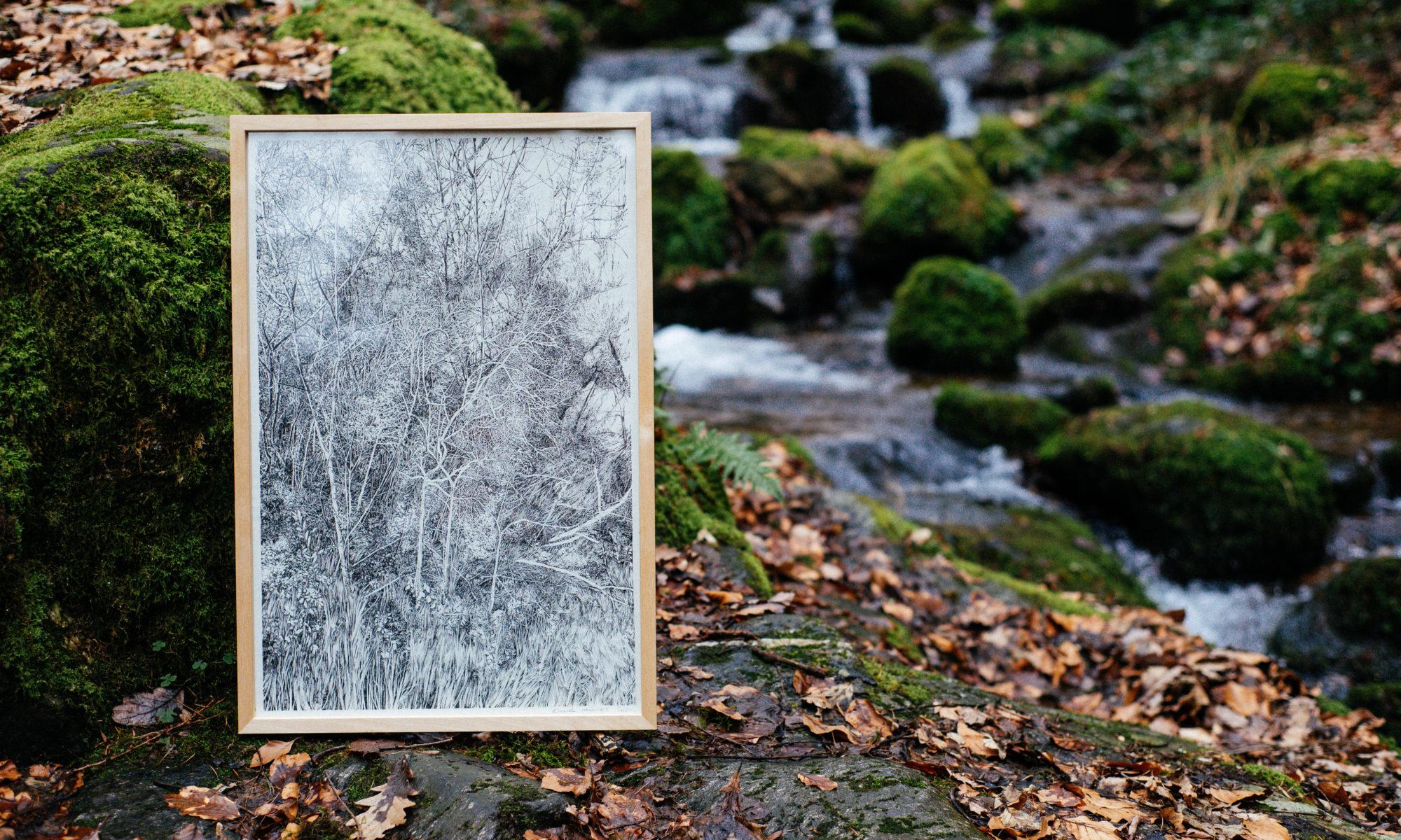 Emmanuel Henninger, Drawing, Landscape, Tree, Germany