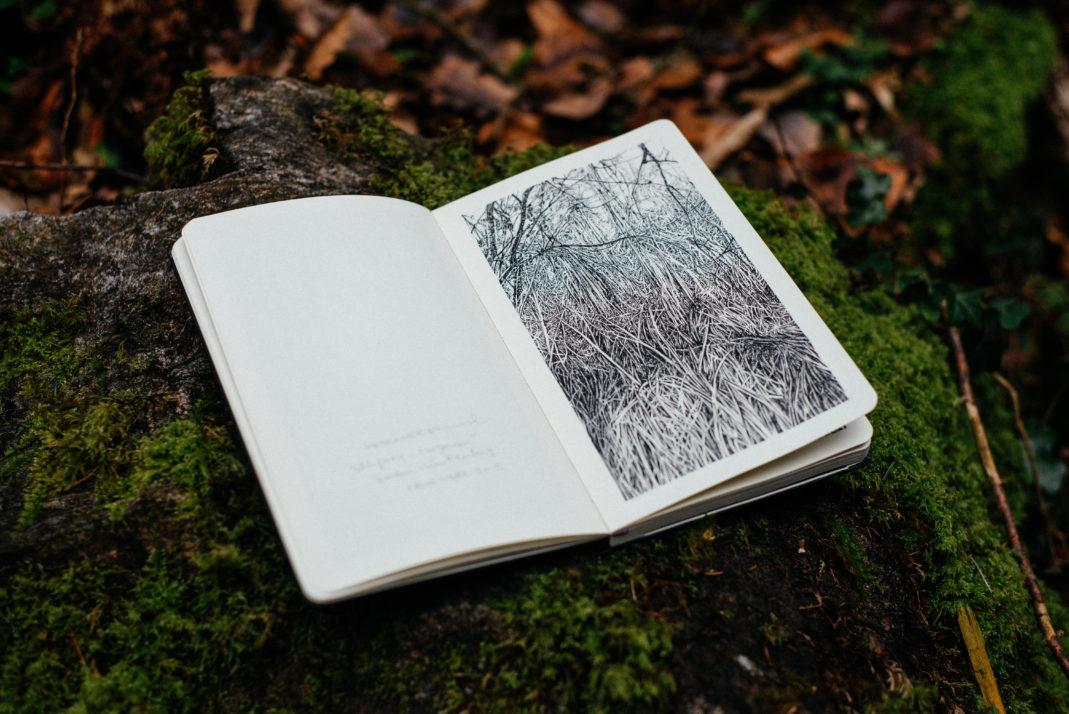 Emmanuel, Henninger, Oliver Kramer, dessin, photo, forêt, nature