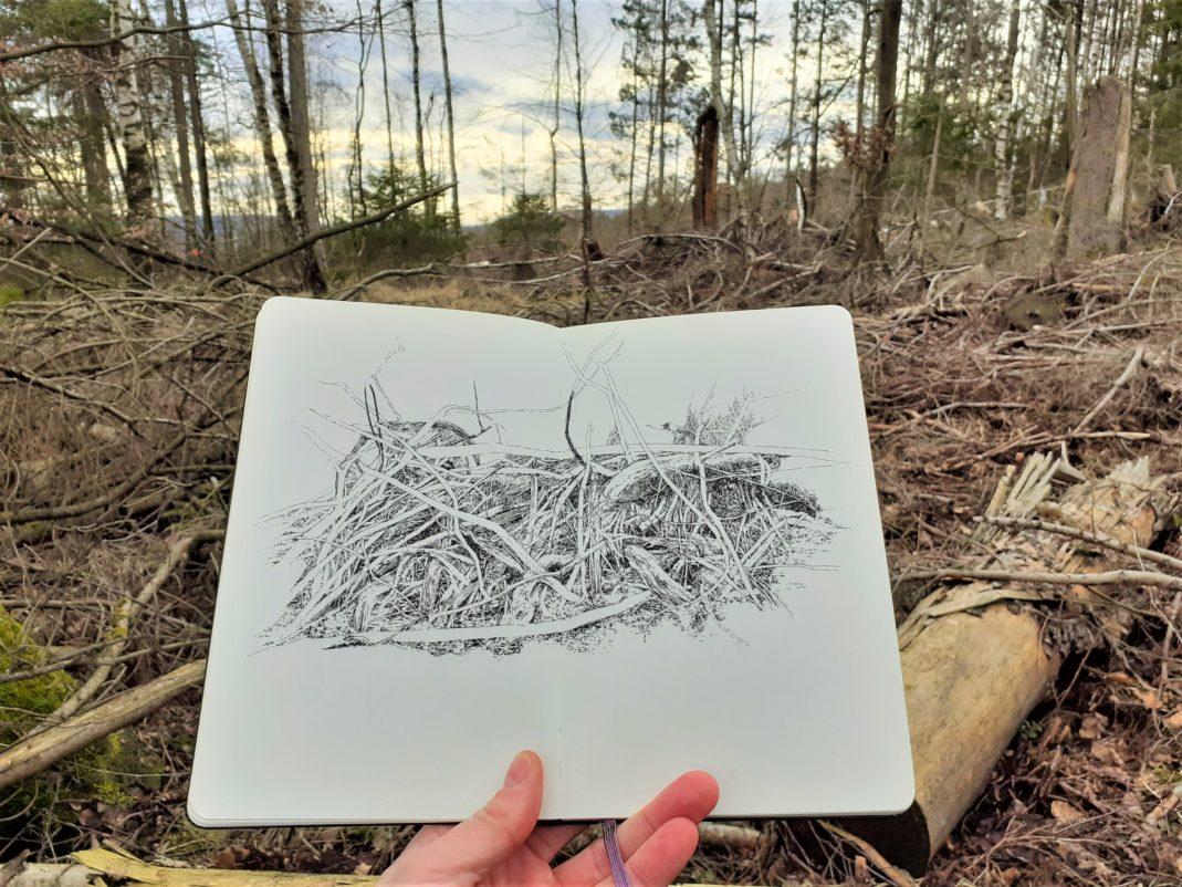 Emmanuel, Henninger, Landscape, Nature, Art, Drawings