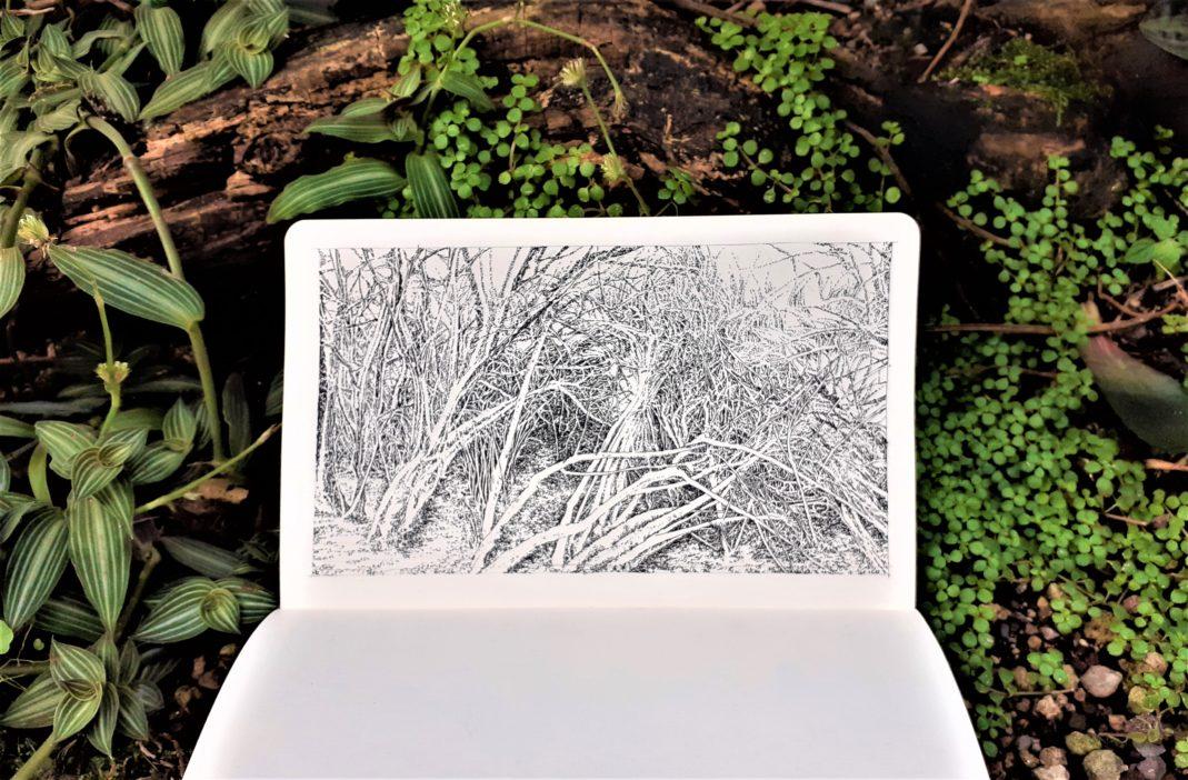 Emmanuel, Henninger, Art, Nature, Landscape, Draw, Drawing, Sketch