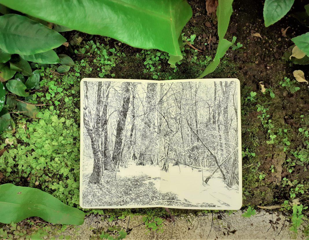 Emmanuel, Henninger, Art, Kunst, Zeichnung, Schwarz, Weiss, Natur,