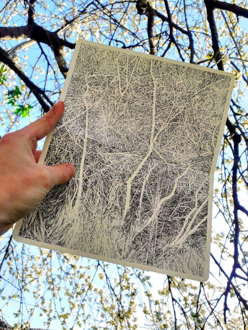 Emmanuel Henninger, draw, trees, ink, moleskine, lanscape, france