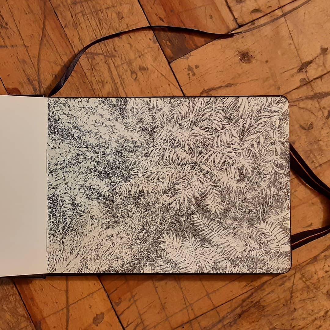 Victory, Square, Yerevan, Artist, Forest, Emmanuel, Henninger, emmanuel henninger, trees, armenia, residency, program, atelier mondial, Kulturdialog, armenien, ink, dessin, paysage
